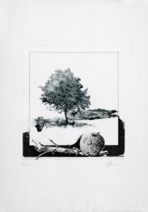 IMG_3508Sandro Lobalzo - Dalla finestra (1988)