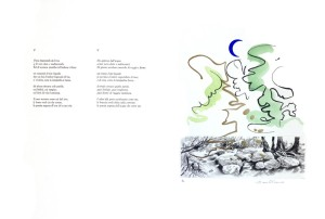 Teresita Terreno - Tavola 5