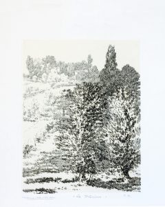 Leonardo Castellani - La tortorina (1957)